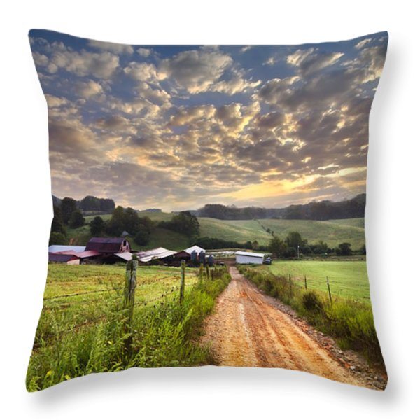 The Old Farm Lane Throw Pillow by Debra and Dave Vanderlaan