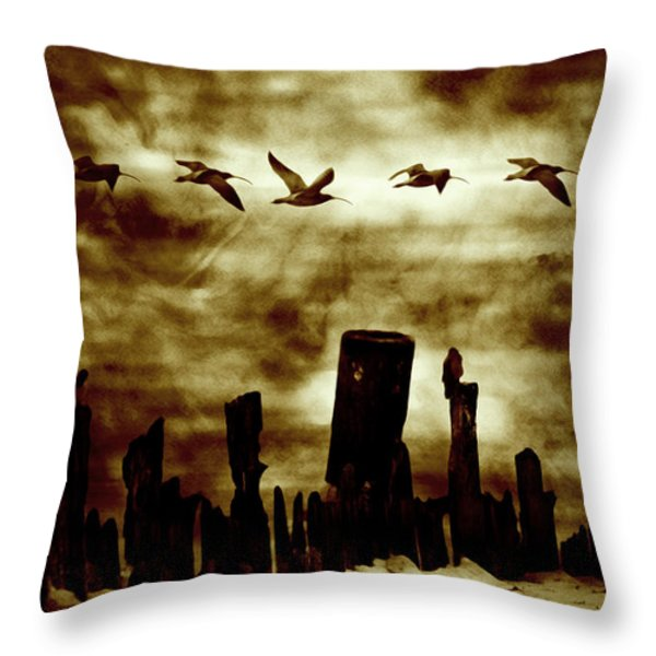 The Old Fence  Throw Pillow by Toppart Sweden