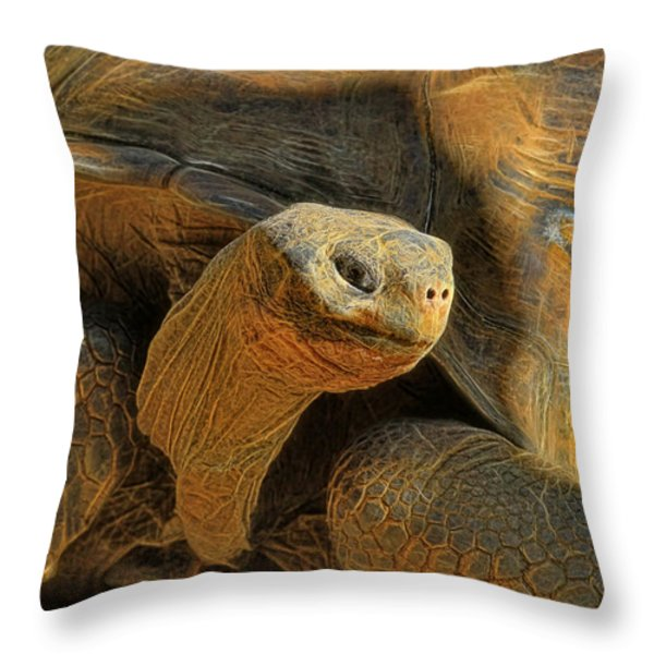 The Old Guy Throw Pillow by Deborah Benoit