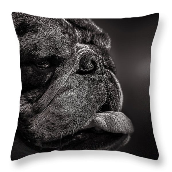 The Other Dog Next Door Throw Pillow by Bob Orsillo
