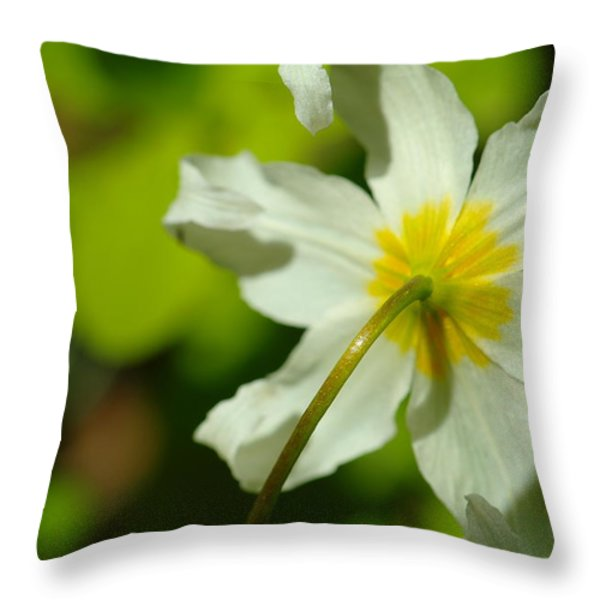 The Other Side Of Beauty Throw Pillow by Jeff  Swan
