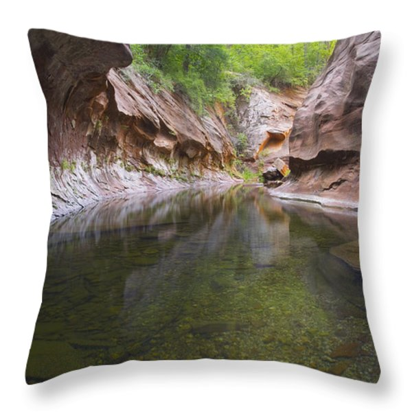 The Passage Throw Pillow by Peter Coskun