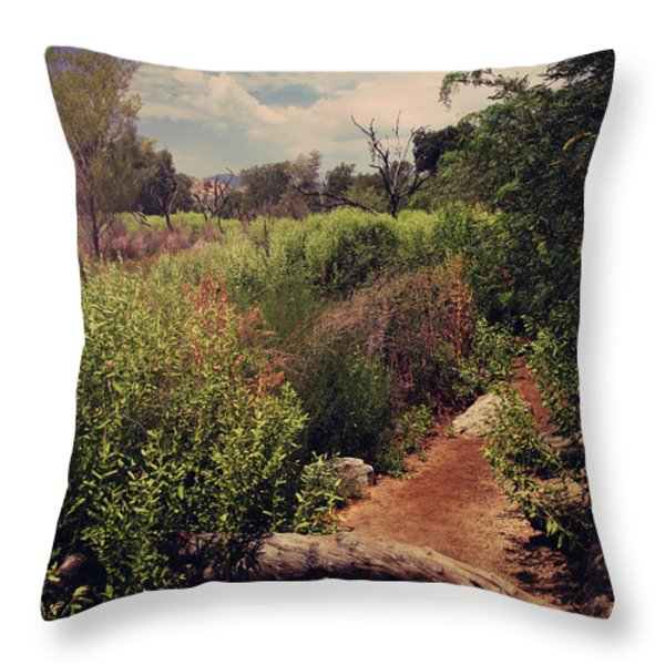 The Past Is Gone Throw Pillow by Laurie Search