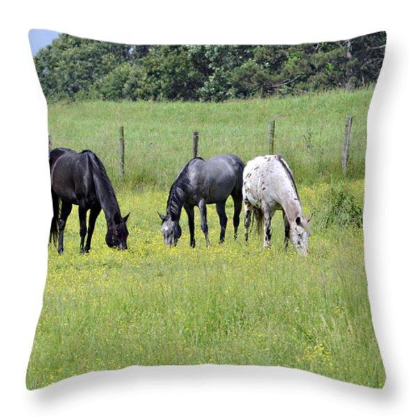 The Pasture Throw Pillow by Susan Leggett