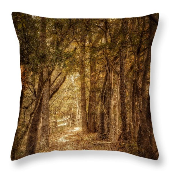 The Path Not Taken Throw Pillow by Scott Norris