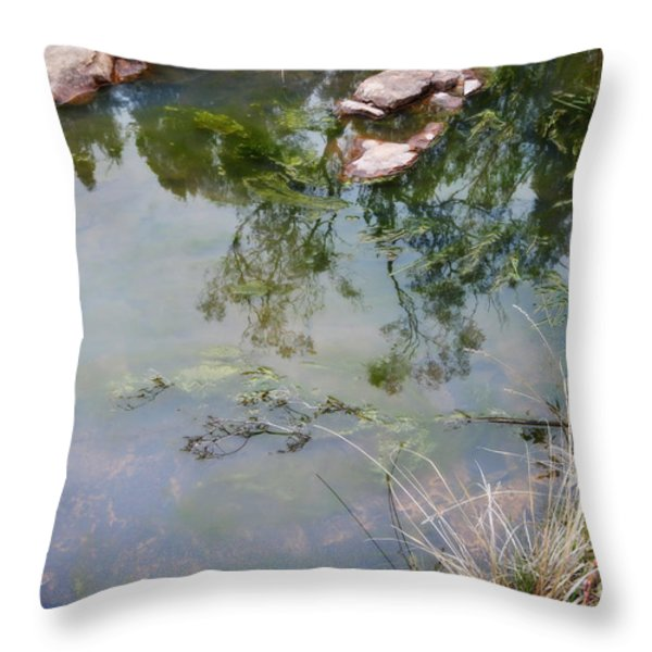 The pond at the top of the falls Throw Pillow by Linda Lees