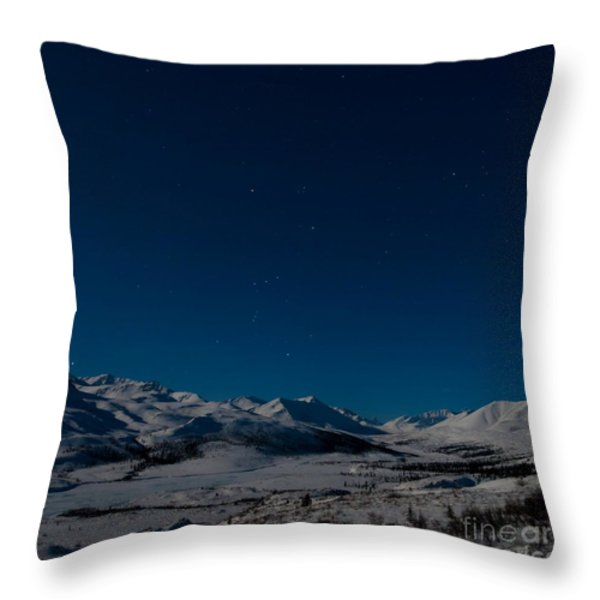 the presence of absolute silence Throw Pillow by Priska Wettstein