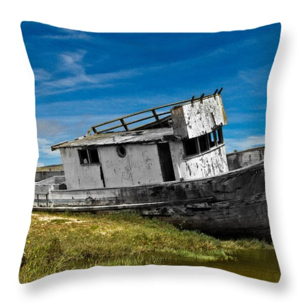The Pt. Reyes Muted Throw Pillow by Bill Gallagher