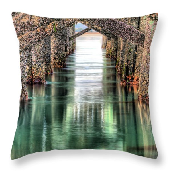 The Quiet Of Green Throw Pillow by JC Findley