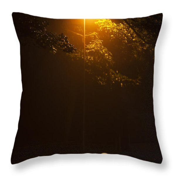 The Red Balloon Throw Pillow by Svetlana Sewell