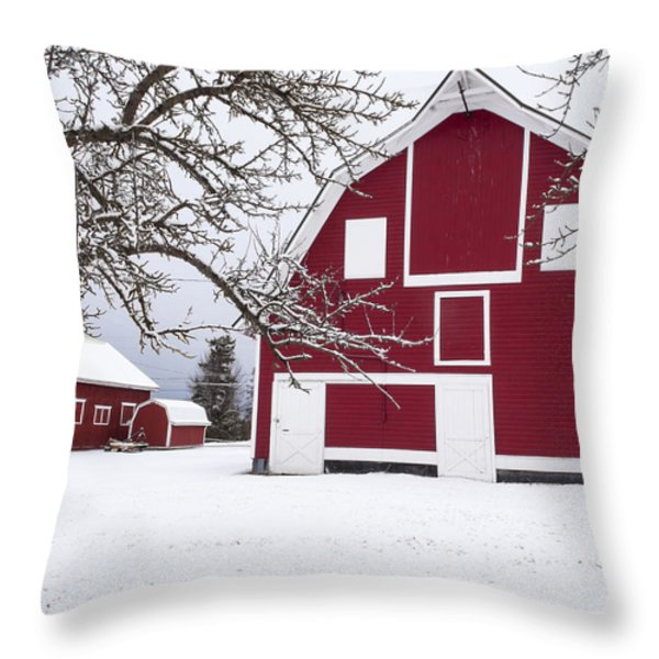 The Red Barn Throw Pillow by Fran Riley