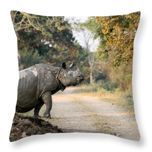 The Rhino at Kaziranga Throw Pillow by Fotosas Photography