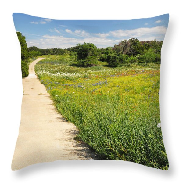 The Road Home Throw Pillow by Lynn Bauer