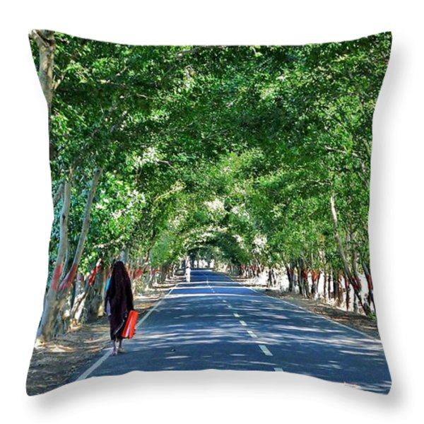 The Road To Amarkantak - Amarkantak India Throw Pillow by Kim Bemis