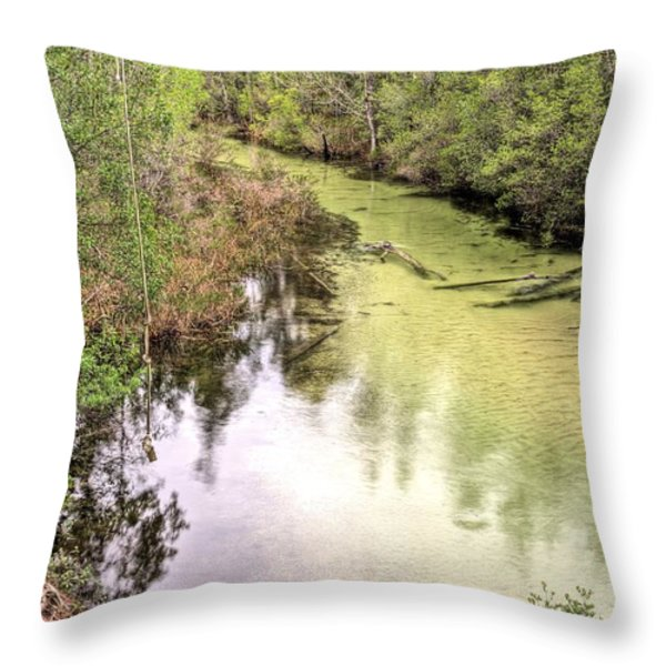 The Rope Swing Throw Pillow by JC Findley