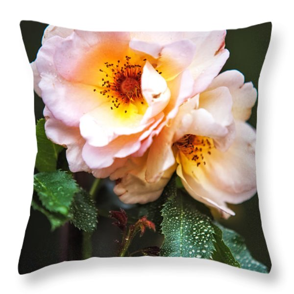 The Rose with Your Name. Park of De Haar Castle Throw Pillow by Jenny Rainbow