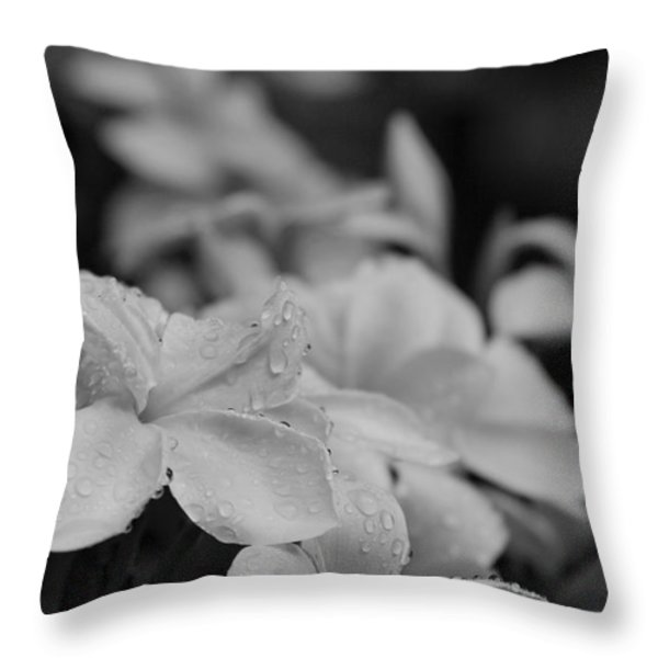 The Sacred Garden Throw Pillow by Sharon Mau