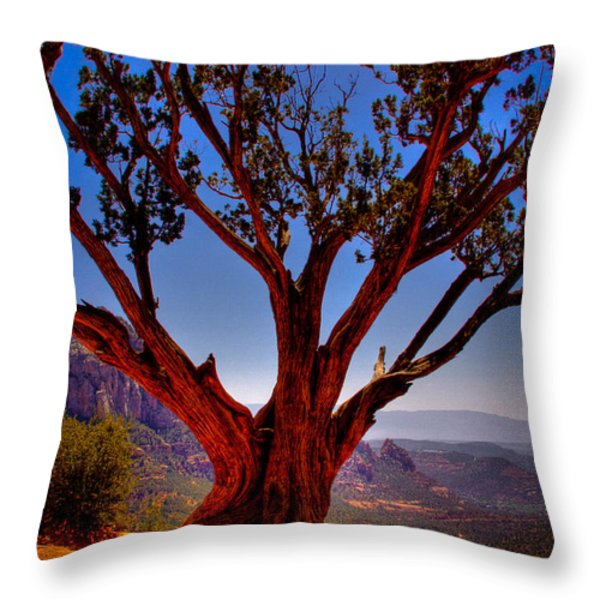 The Scene in many John Wayne Westerns Throw Pillow by David Patterson