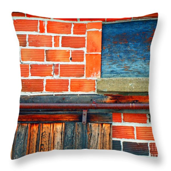 The Shed Throw Pillow by Tara Turner
