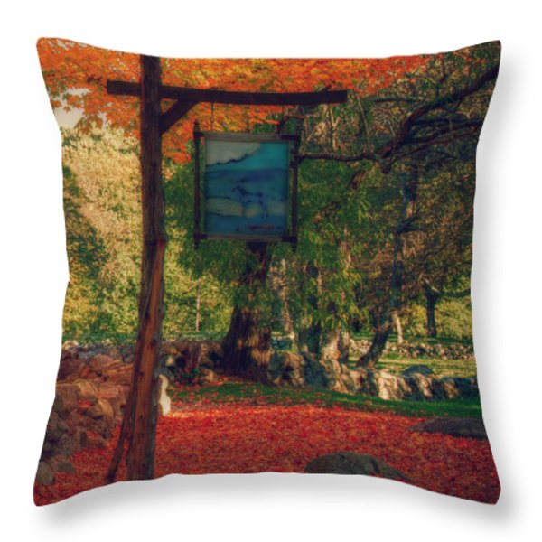 the sign of fall colors Throw Pillow by Jeff Folger