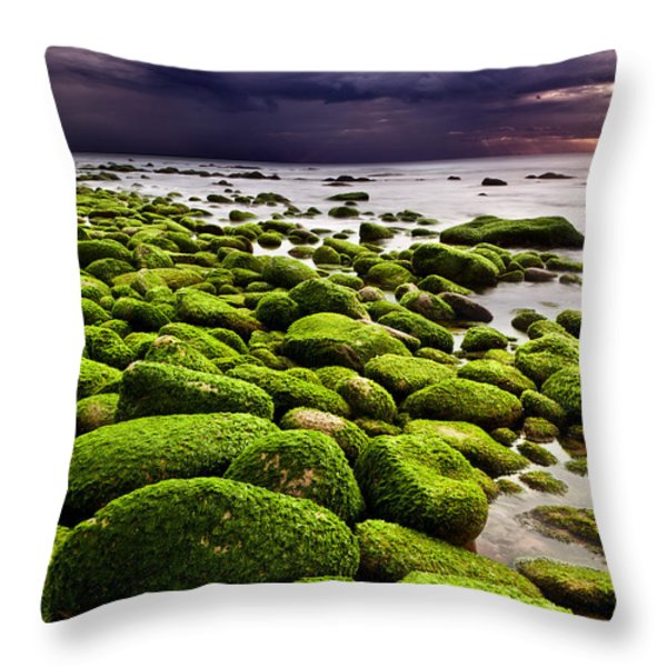 The Silence After The Storm Throw Pillow by Jorge Maia