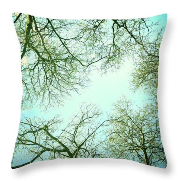 The Sky Throw Pillow by Guido Montanes Castillo