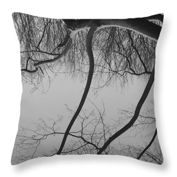 The Sky is Falling Throw Pillow by Luke Moore