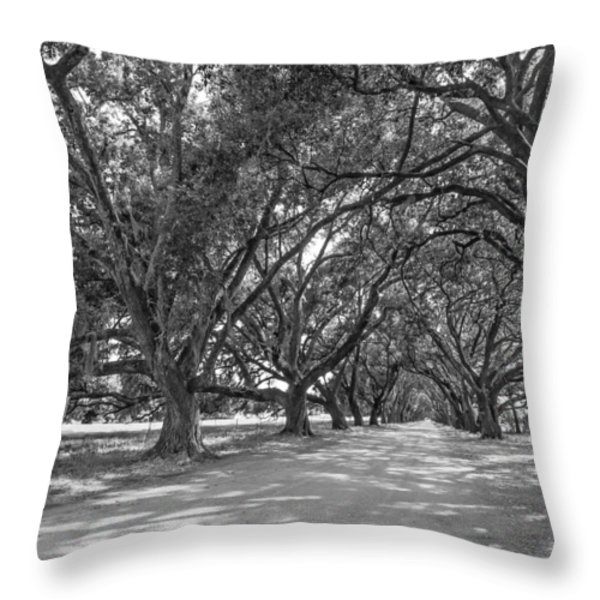 The Southern Way bw Throw Pillow by Steve Harrington