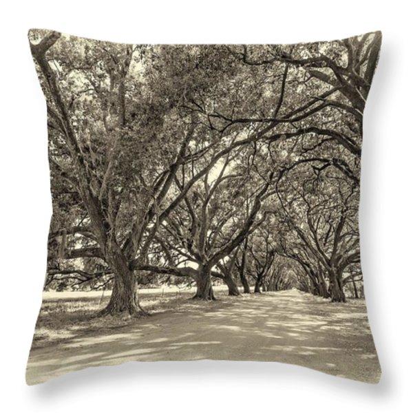 The Southern Way sepia Throw Pillow by Steve Harrington