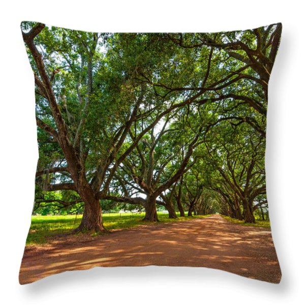 The Southern Way  Throw Pillow by Steve Harrington