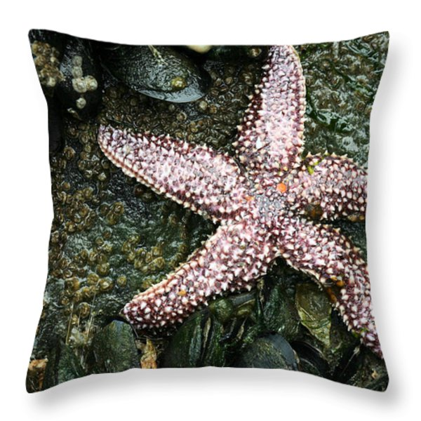 The Starfish  Throw Pillow by JC Findley