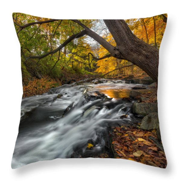 The Still River Square Throw Pillow by Bill  Wakeley