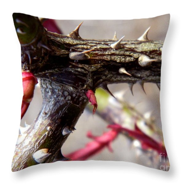 The Thorns Of Life Throw Pillow by Andrea Anderegg