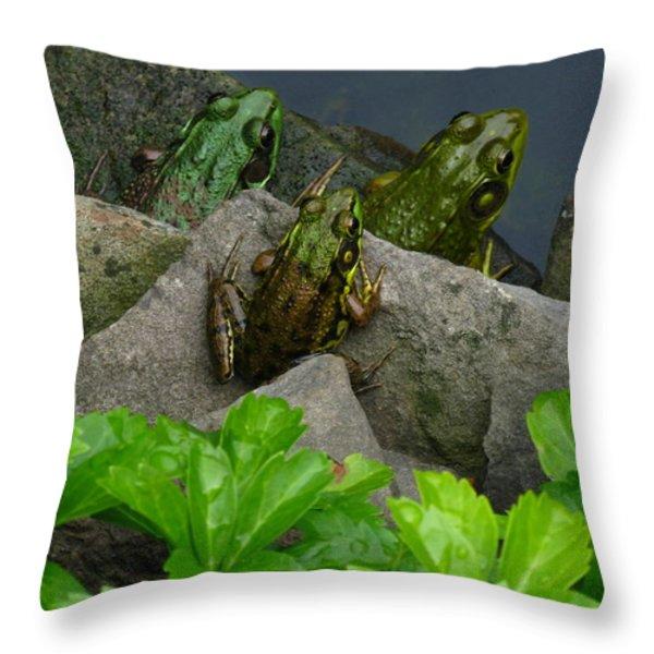 The Three Amigos Throw Pillow by Raymond Salani III