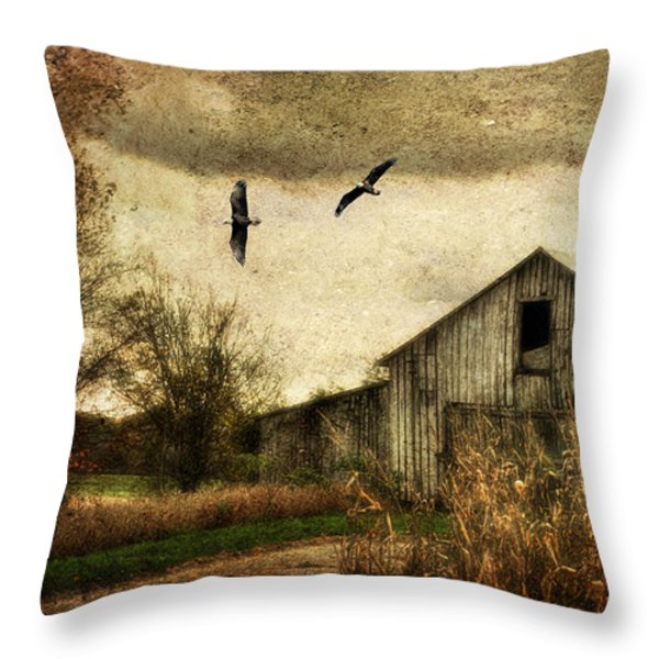 The Times They Are A Changing Throw Pillow by Lois Bryan