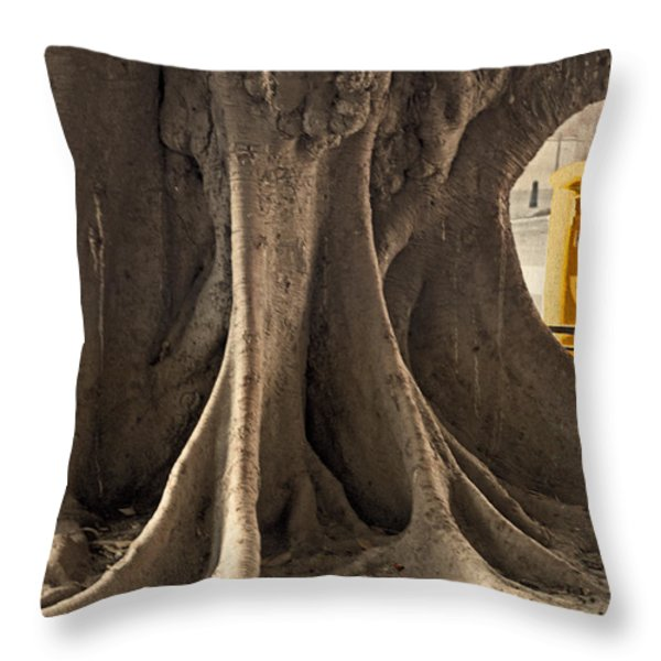 The Tree And The Post Box Throw Pillow by Mary Machare