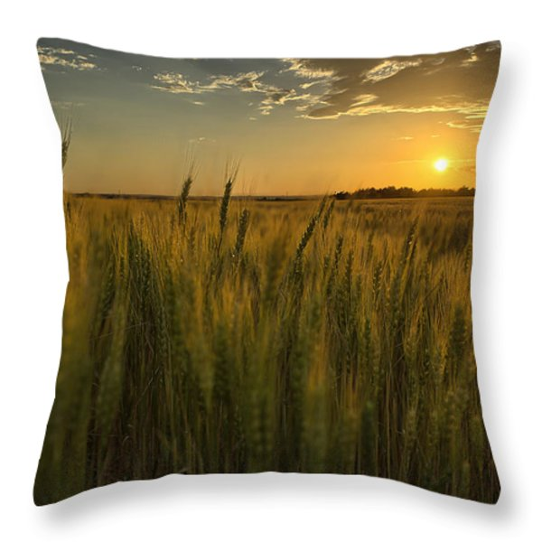 The Turn Throw Pillow by Thomas Zimmerman