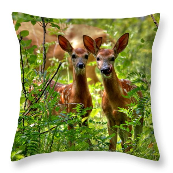 The Twins Throw Pillow by Larry Trupp