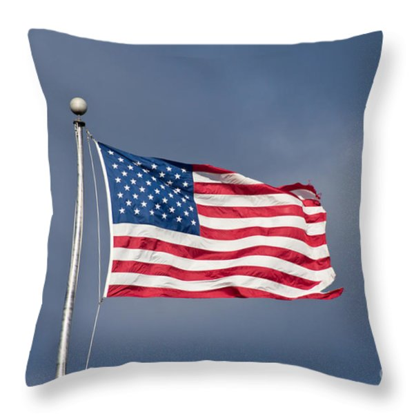 The United States of America Throw Pillow by Benjamin Reed
