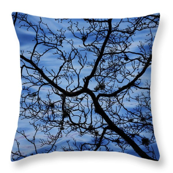 The Veins of Time Throw Pillow by Andrew Pacheco