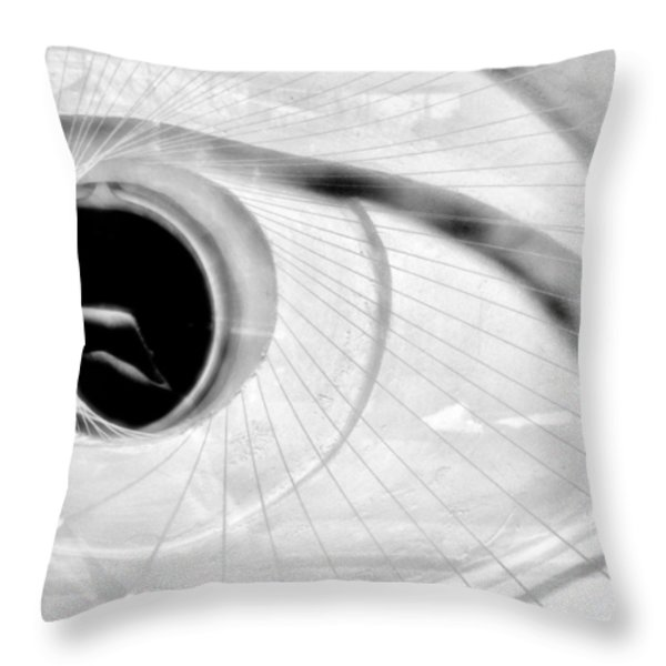 The View In The Eye Throw Pillow by Marcia Lee Jones