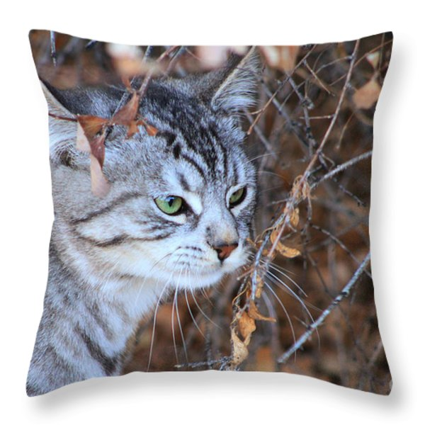 The Visitor Throw Pillow by Alyce Taylor