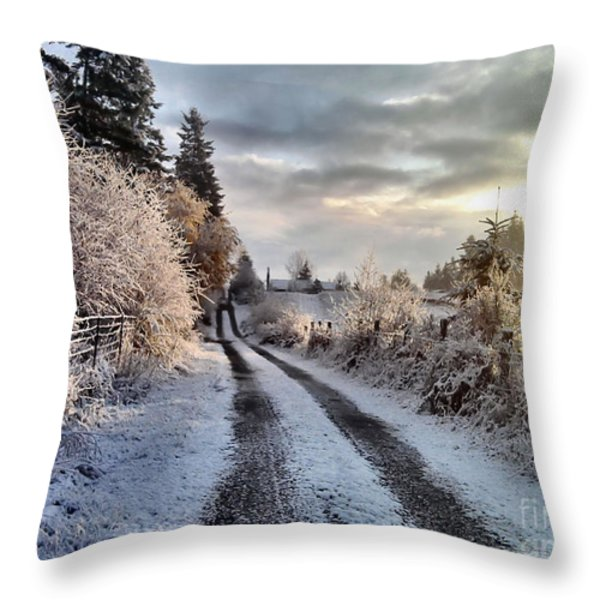 The Way Home Throw Pillow by Rory Sagner