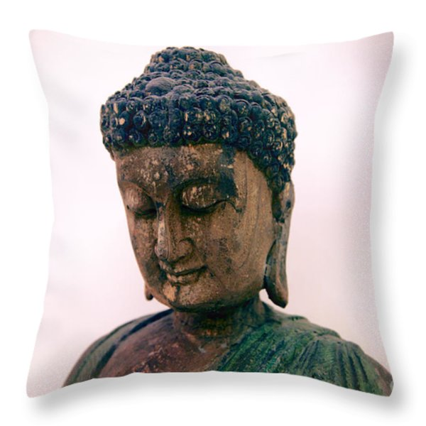 The Way Of The Master Throw Pillow by T Lang