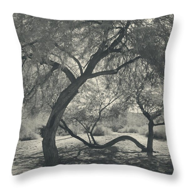 The Way We Move Together Throw Pillow by Laurie Search