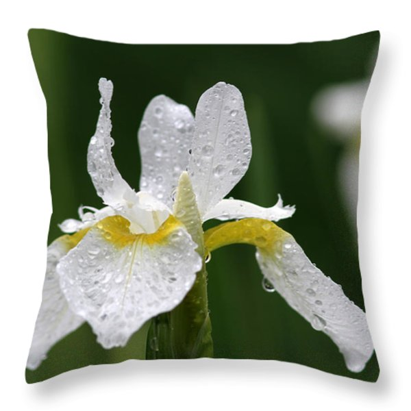 The White Iris Throw Pillow by Juergen Roth
