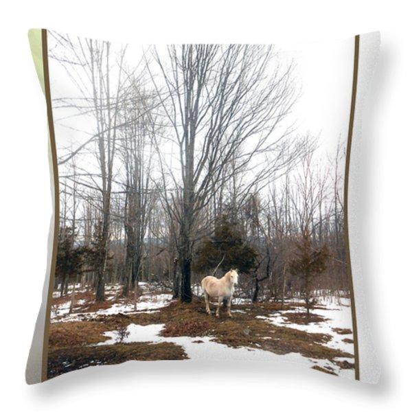 The White Stallion On A Snowless  Mound Throw Pillow by Patricia Keller