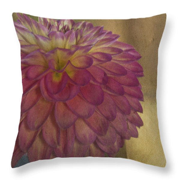 There's Always Next Year Throw Pillow by Trish Tritz