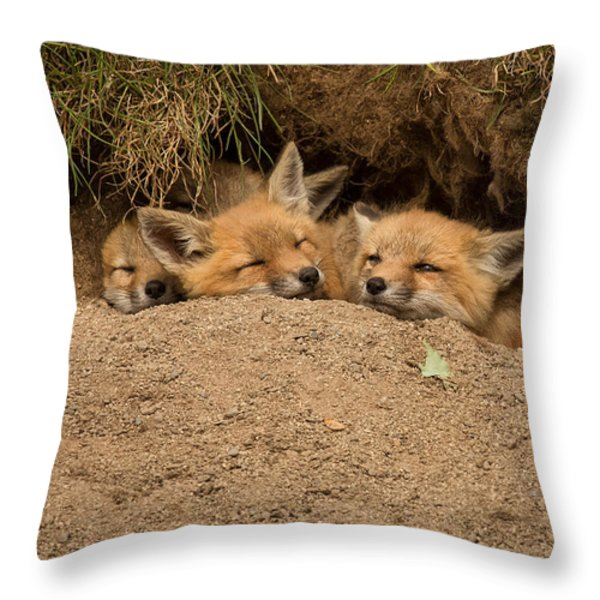 There's always room for more Throw Pillow by Everet Regal