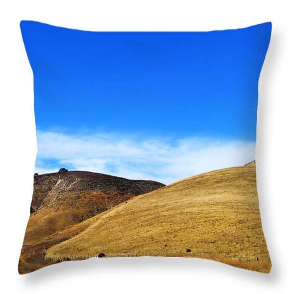 There's Gold on them thar Hills Throw Pillow by Camille Lopez